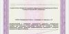 Лицензия-на-мед-деятельность-№-ЛО-33-01-002785-от-22.03.2019_page-0013