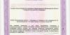 Лицензия-на-мед-деятельность-№-ЛО-33-01-002785-от-22.03.2019_page-0019