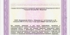 Лицензия-на-мед-деятельность-№-ЛО-33-01-002785-от-22.03.2019_page-0028