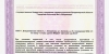 Лицензия-на-мед-деятельность-№-ЛО-33-01-002785-от-22.03.2019_page-0030